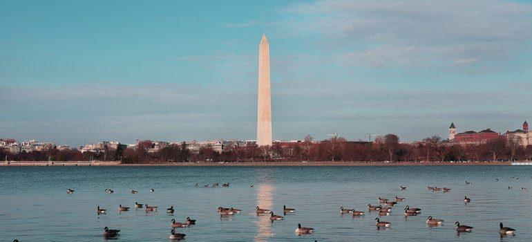 Washington obelisk.